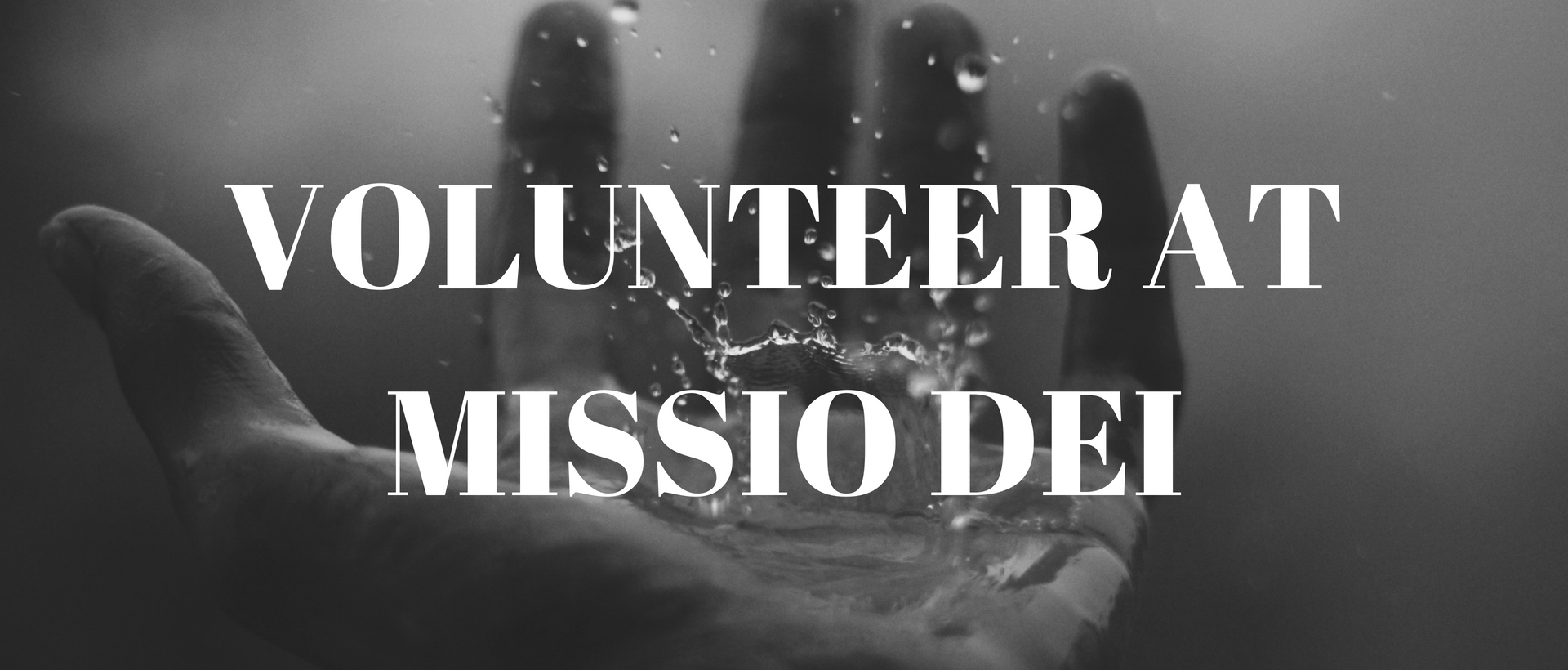 Volunteering at missio Dei: Falcon